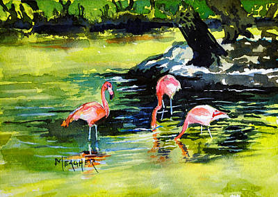 Flamingos At The St Louis Zoo Art Print by Spencer Meagher