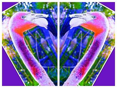 Photograph - Flamingos' Heart by Thommy McCorkle