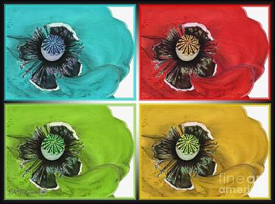 Drawing - Flanders Poppy Pop Art by J McCombie