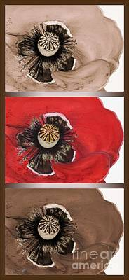Drawing - Flanders Poppy Triptych by J McCombie