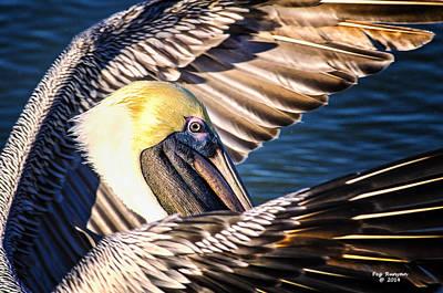 Photograph - Flapper by Peg Runyan