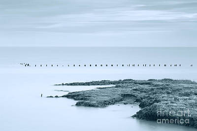 Photograph - Flat Calm by Trevor Chriss