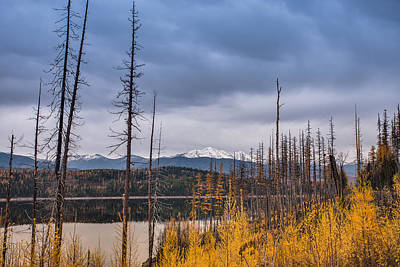 Photograph - Flathead National Forest by Adam Mateo Fierro