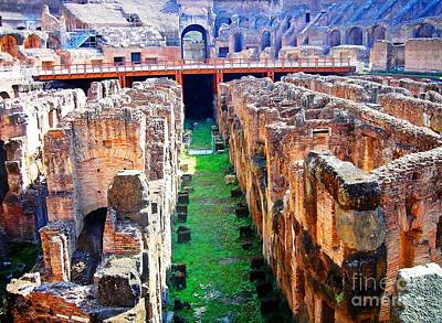 Flavian Amphitheatre Art Print