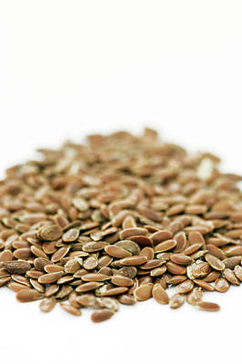 Linus Wall Art - Photograph - Flax Seeds by Geoff Kidd/science Photo Library