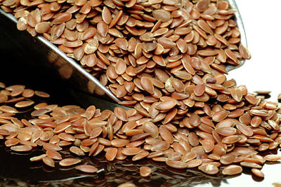 Linus Wall Art - Photograph - Flax Seeds In A Scoop by Bildagentur-online/th Foto/science Photo Library