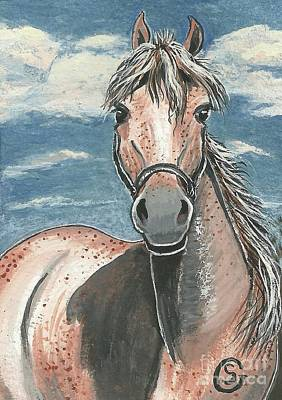 Terra Painting - Fleabitten Mare -- You Got A Problem With Freckles? by Sherry Goeben