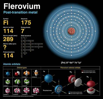 Data Photograph - Flerovium by Carlos Clarivan