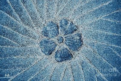 Photograph - Fleur Blue by Geri Glavis