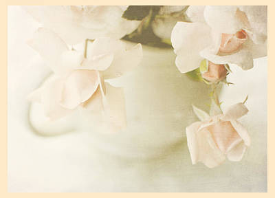 Photograph - Fleur Du Jour by Beverly Cazzell
