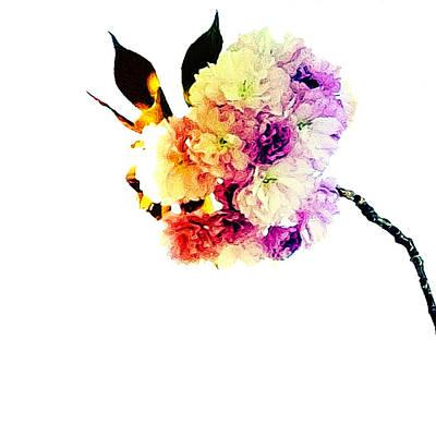 Fleur Art Print by Natasha Marco