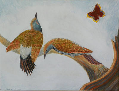 Pastel - Flicker Courtship Dance by Dawn Senior-Trask