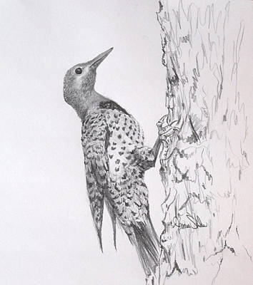 Drawing - Flicker by James Skiles