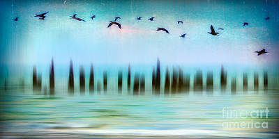 Photograph - Flight - A Tranquil Moments Landscape by Dan Carmichael