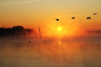 Flight At Sunrise Art Print