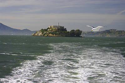 Cruising The Coast Wall Art - Photograph - Flight From Alcatraz - San Francisco Bay California by Michael Mazaika