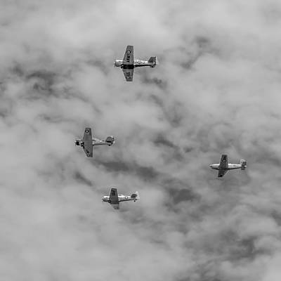 Photograph - Flight Of Four by Guy Whiteley