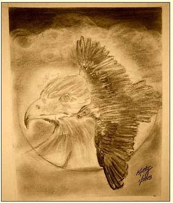 Eagle In Flight Drawing - Flight Of The Eagle by Gary Kelty