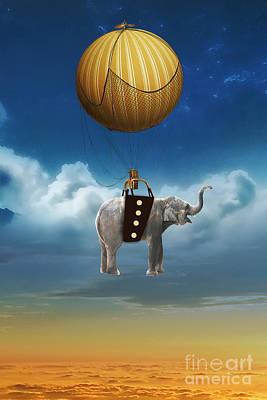 Flight Of The Elephant Art Print