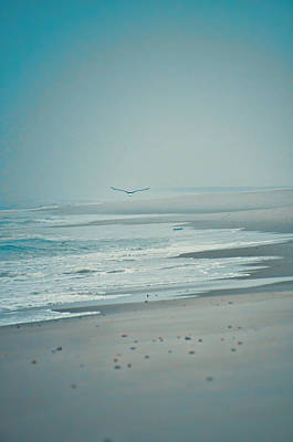Photograph - Flight Of Tranquility And Peace by Beth Sawickie