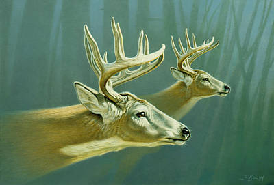 Whitetail Deer Wall Art - Painting - Flight by Paul Krapf