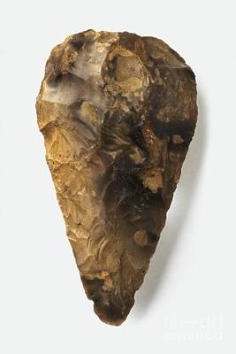 Handaxe Photograph - Flint Handaxe Found In Kent, England by Colin Keates / Dorling Kindersley / Natural History Museum, London