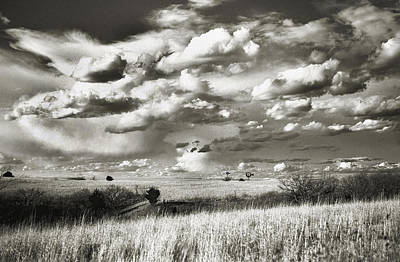 Flint Hills Prairie Art Print by Thomas Bomstad