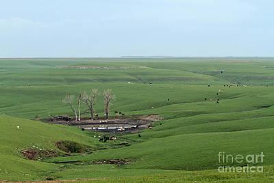 Flint Hills Of Kansas Photograph - Flint Hills Ranch by Betty Morgan
