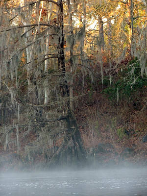 Art Print featuring the photograph Flint River 15 by Kim Pate