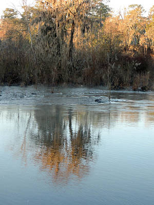 Art Print featuring the photograph Flint River 17 by Kim Pate