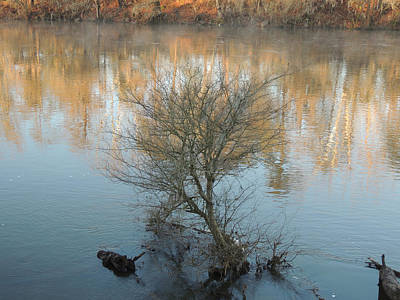 Art Print featuring the photograph Flint River 24 by Kim Pate