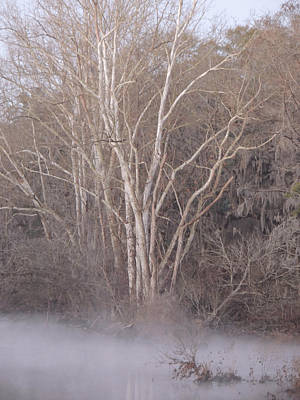 Art Print featuring the photograph Flint River 9 by Kim Pate