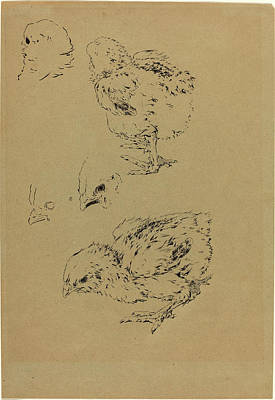 1833 Drawing - Félix Bracquemond, Chicks, French, 1833-1914 by Litz Collection