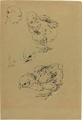 Félix Bracquemond, Chicks, French, 1833-1914 Art Print