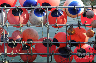 Photograph - Floats by Doug Wilton