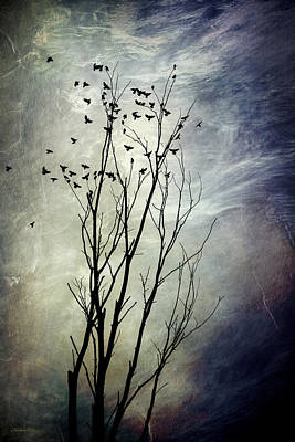Blackbird Mixed Media - Flock Of Birds In Silhouette by Christina Rollo
