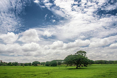 Bangalore Photograph - Flock Of Clouds by Arvind Manjunath Photography