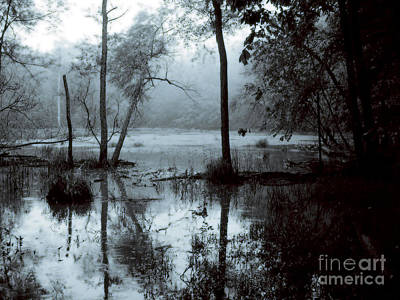 Photograph - Flood by Jane Ford
