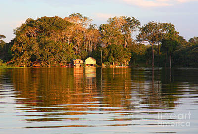 Art Print featuring the photograph Flooded Amazon With Houses by Nareeta Martin