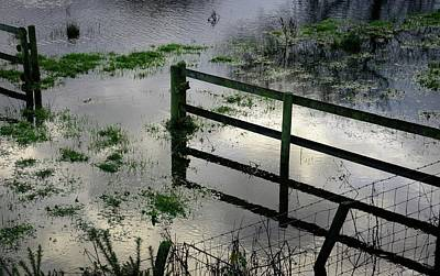 Flooding Photograph - Flooded Field by Cordelia Molloy