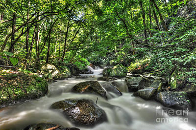 Art Print featuring the photograph Flooded Small Stream  by Dan Friend