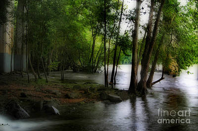 Saluda Photograph - Flooding On The Saluda by Skip Willits