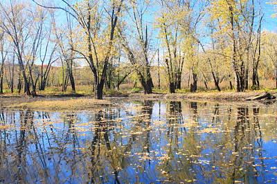 Photograph - Floodplain Forest In Autumn At Arcadia Wildlife Sanctuary by John Burk