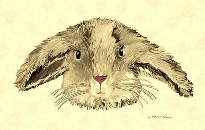 Digital Art - Floppy Bunny by Elizabeth S Zulauf