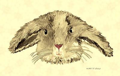 Drawing - Floppy Bunny by Elizabeth S Zulauf