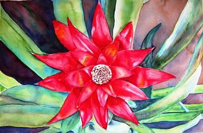 Flor Bromelia Original by Ronald Oliver