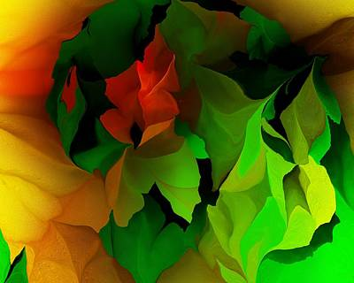 Print featuring the digital art Floral Abstraction 090814 by David Lane