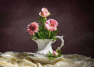 Asters Photograph - Floral Arrangement by Amanda Elwell