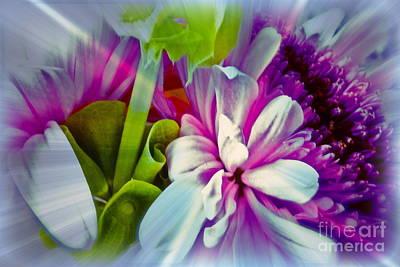 Floral Array Art Print by Linda Bianic
