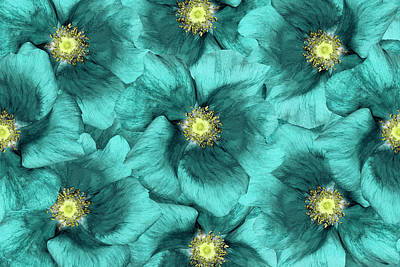 Photograph - Floral  Background .turquoise Flowers by Fnadya76
